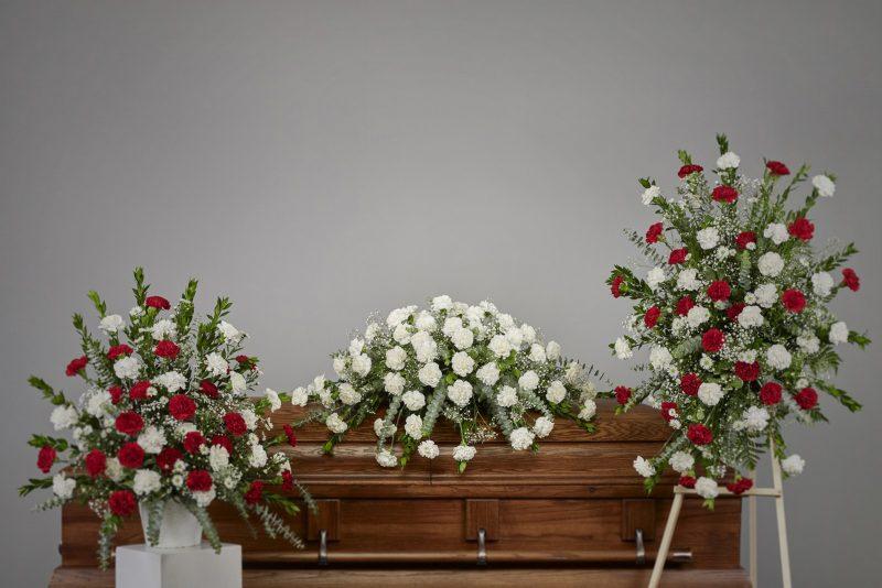 Carnation134